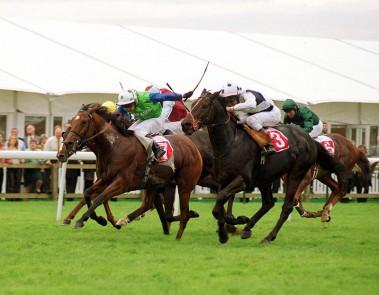 Capal Garmon - Jockey Clubv Cup, Newmarket